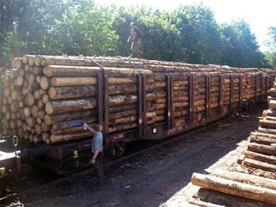 Hubert Forst GmbH - Holzhandel