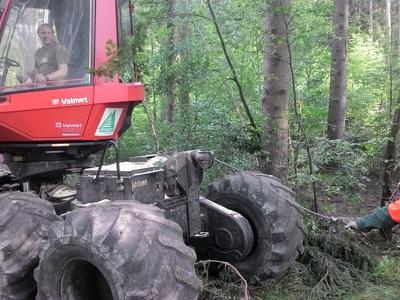 Hubert Forst GmbH - Harvestertechnik